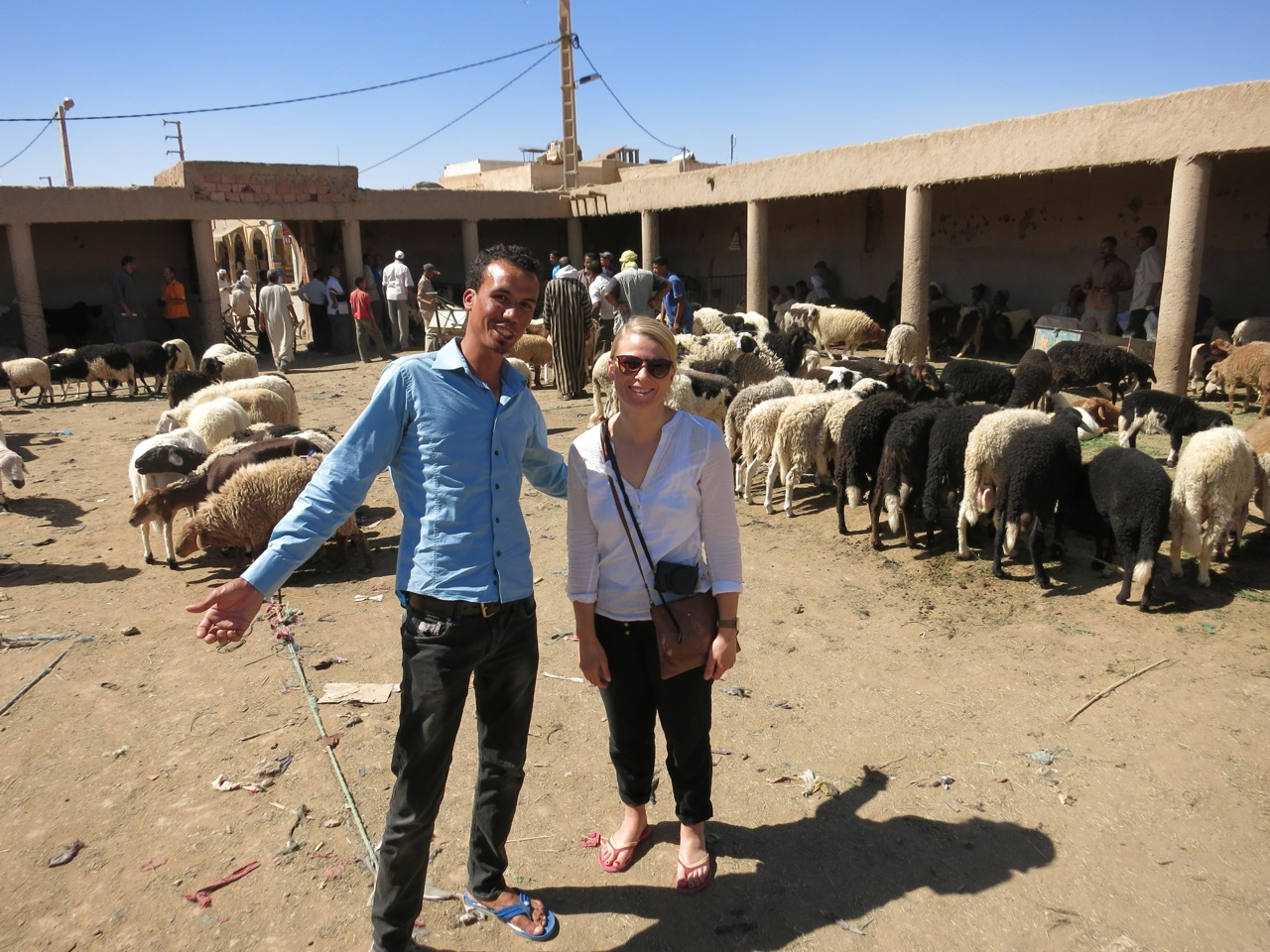 Schafsmarkt Rissani