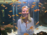 Townsville: Great Barrier Reef Aquarium