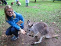 Australia Zoo: Känguru Fütterung