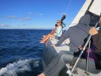 Australien: Segeln bei den Whitsunday Islands