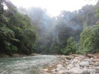 Bukit Lawang: Flusstal