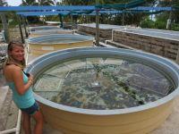 Cookinseln: Marine Research Center auf Aitutaki