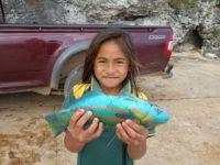 Atiu: Papageienfisch