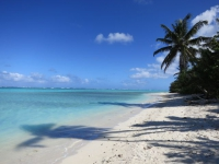 Rarotonga: Palmenstrand