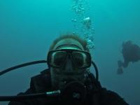 Tauchen am Napoleon Riff