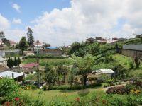 Garten des Talitha Guesthouse
