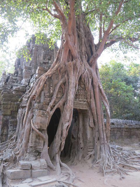 Angkor: Preah Khan