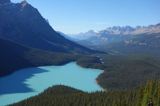 Rocky Mountains: Peyto Lake