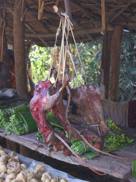Oudomxai: gegrillte Ratten