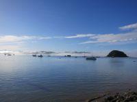 Bucht von Paihia