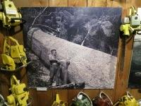 Matakohe: Holzfäller im Kauri-Museum