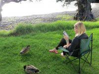 Coromandel Peninsula: Stony Bay