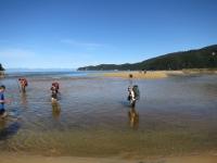 Abel Tasman: Tide Krezung