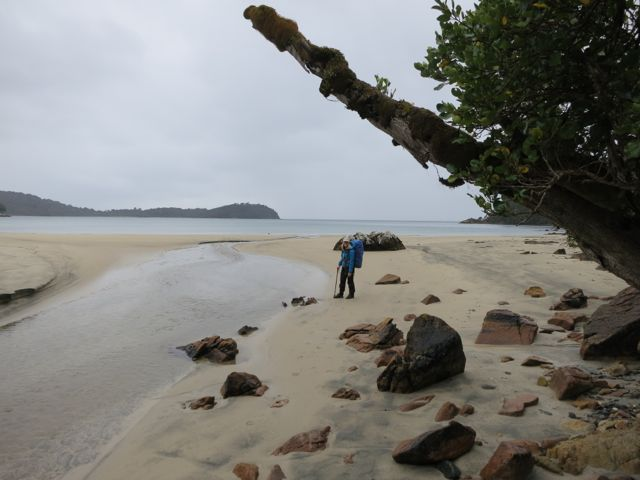 Stewart Island: Rakiura Track