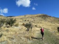 Neuseeland: Wanderung zum Roy´s Peak