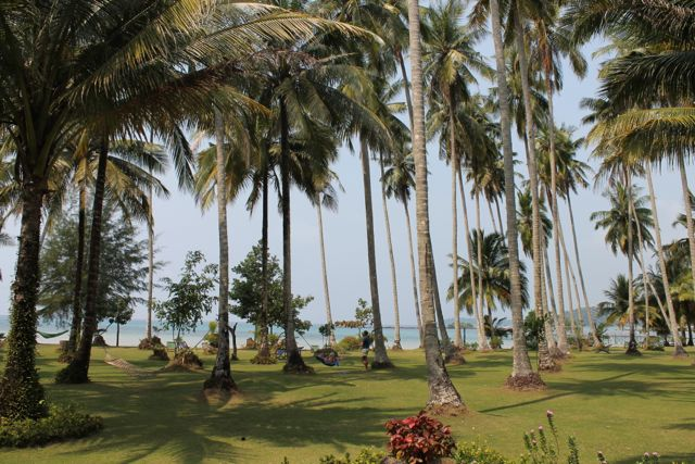 Ko Kood: Palmengarten Dusita Resort
