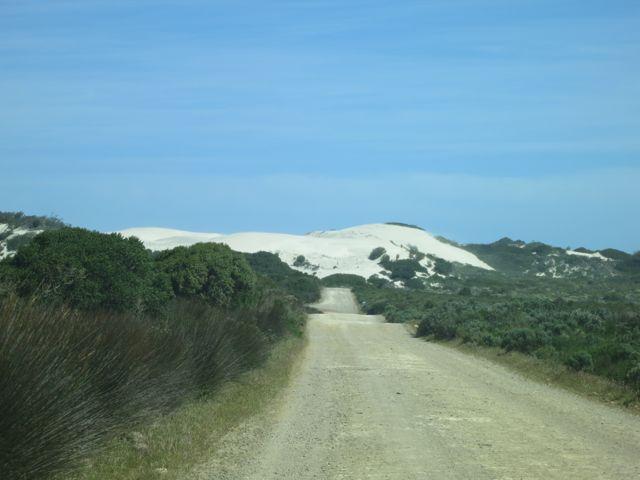 De Hoop: Sanddünen
