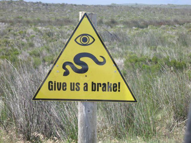 De Hoop: Achtung Schlangen