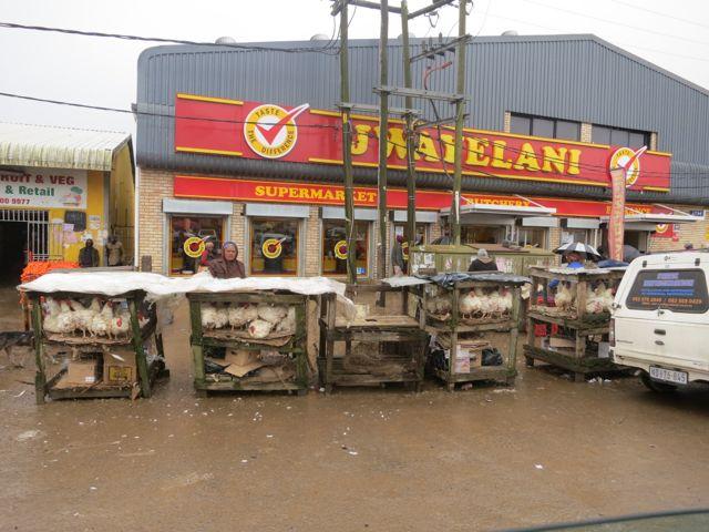 Transkei: Chickenmarkt