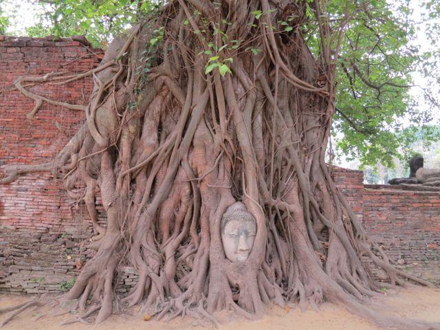 Buddhakopf Wat Mahathat